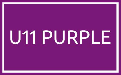 U11 Purple